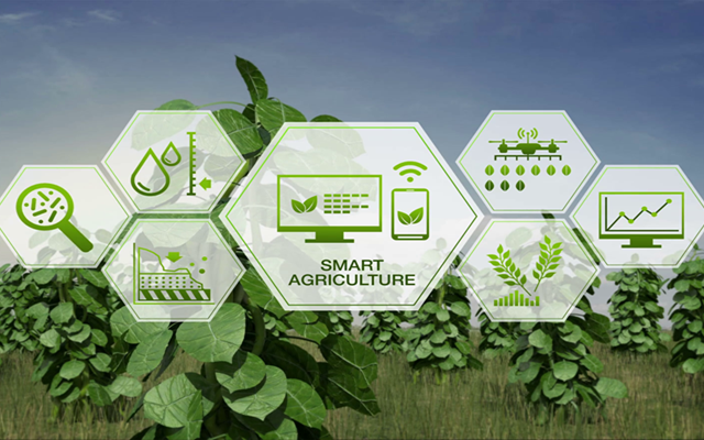 iot-agriculture